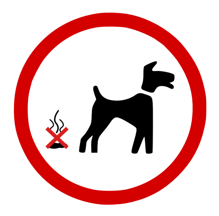 Update: Dog Waste – Action Taken